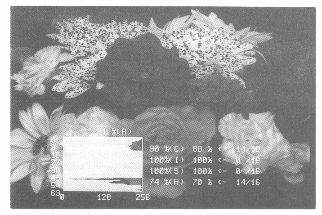 Figure 4: Flower image & responses bar chart when hue in the range 40-42 is changed to 45
